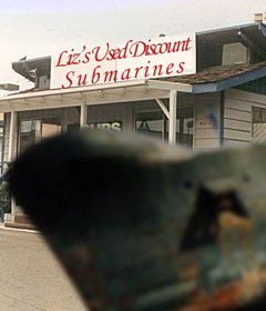 A Visit to Liz's Used Discount Submarines