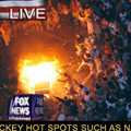 Riots Breakout in Southern US over Cancellation of NHL Season